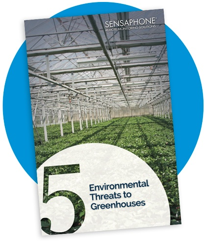 5 Environmental Threats to Greenhouses
